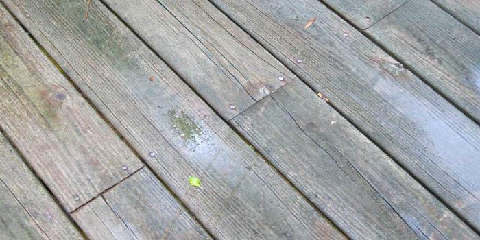 kerusakan kayu secara kimia
