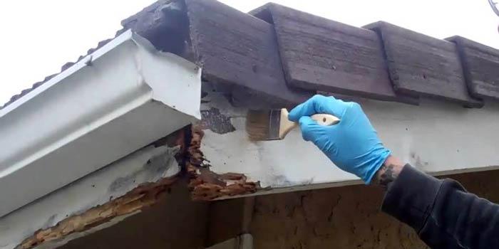 Penyebab Kerusakan kayu