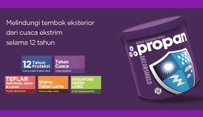 Propan-decorshield-dw-500