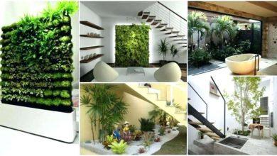 membuat taman indoor