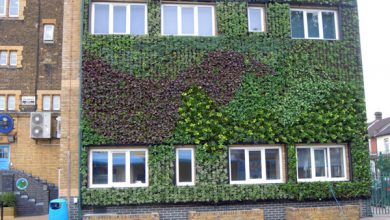 Mengenal Green Wall Solusi Eksterior Bangunan Ramah Lingkungan
