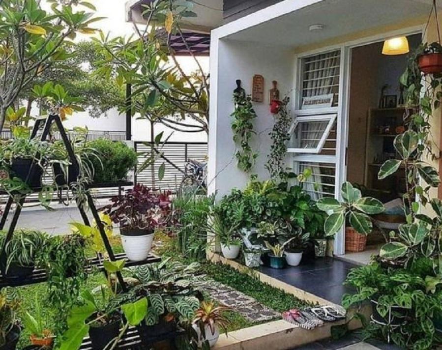 Ciri-ciri rumah sehat dengan banyak pohon